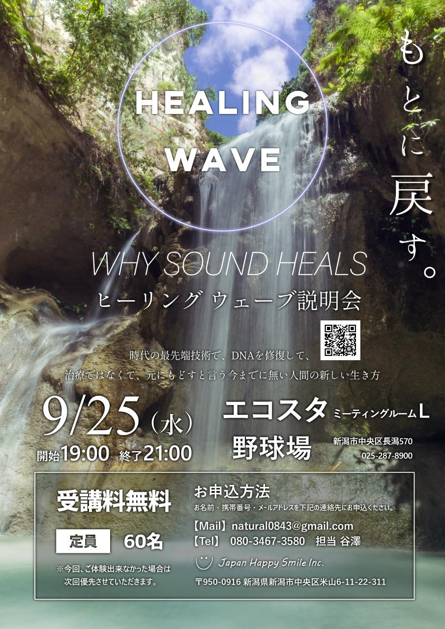 healingwave-taiken